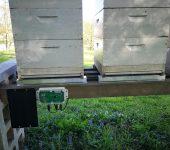Spremljanje dogajanja v panju s čebelarsko tehtnico prek telefona ali računalnika