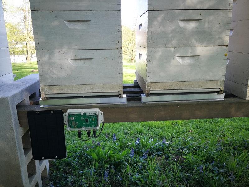 Čebelarska tehtnica za natančno merjenje
